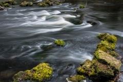 Little Hillsborough Rapids