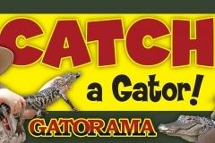 Gatorama Sign